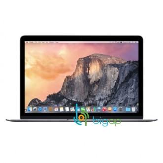 Ноутбук Apple MacBook Early 2016 MLH82RU/A Space Grey