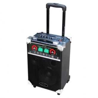 Портативная аудиосистема MAX Q67